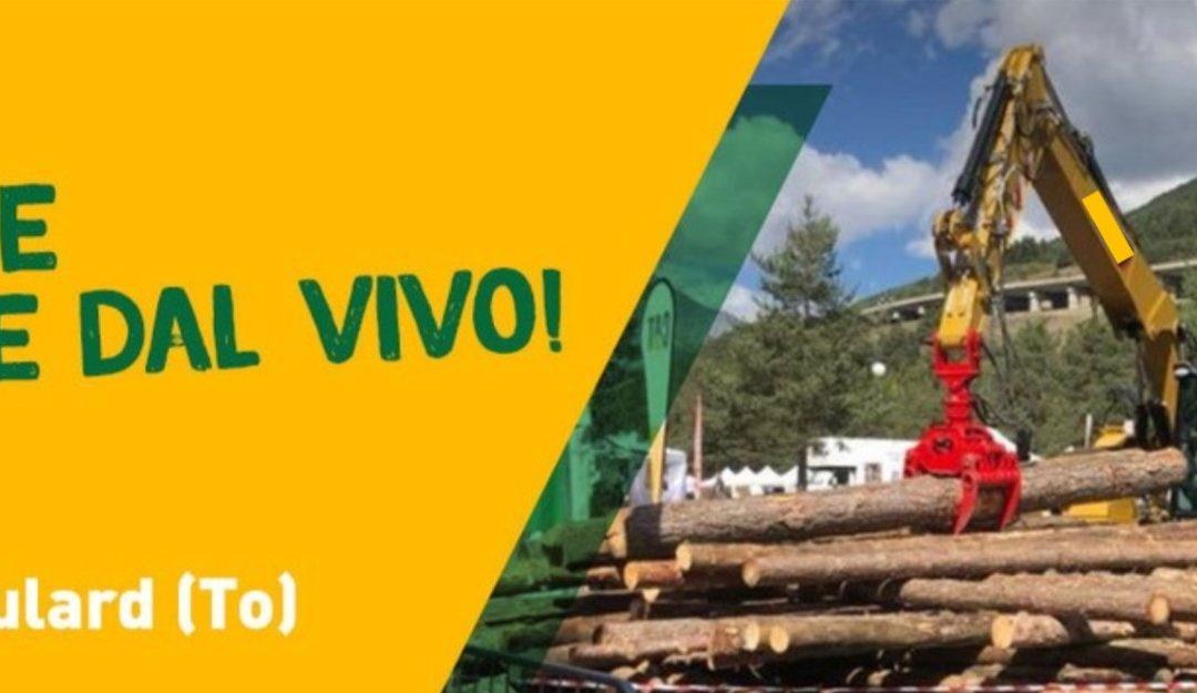 Boster, la fiera sulle filiere bosco-legno dal 2 al 4 luglio a Oulx-Beaulard (To): noi ci siamo!